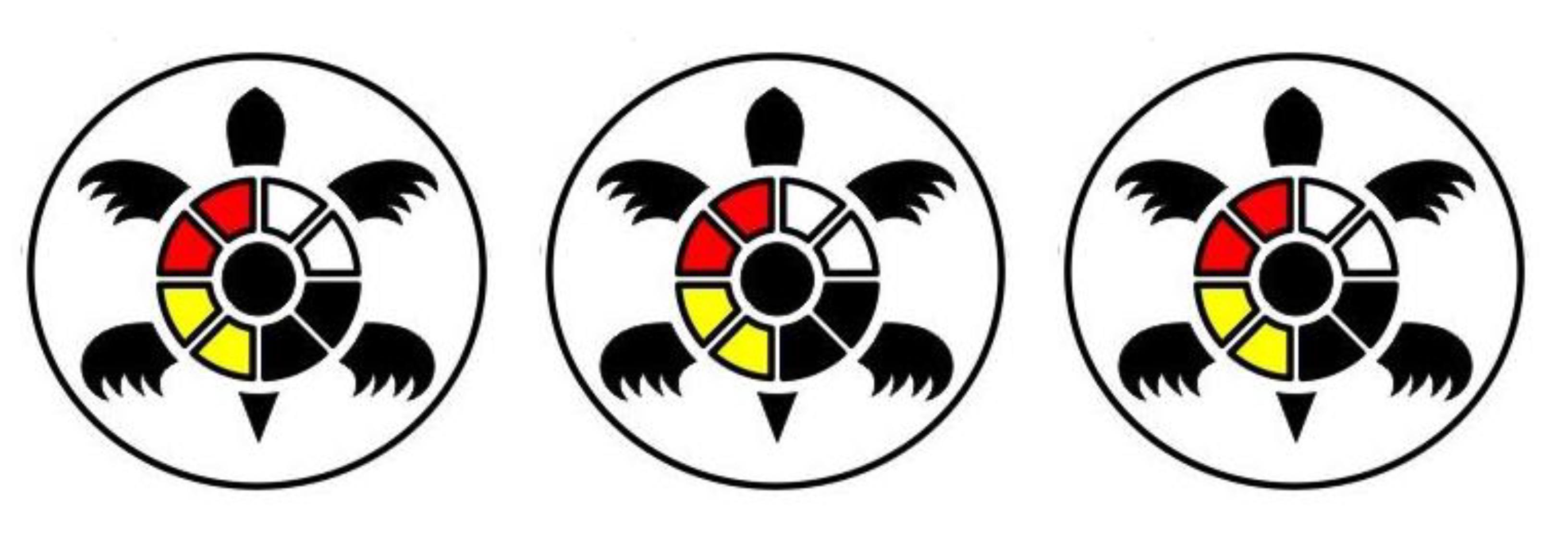 turtle logos